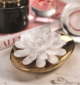 Dream Porcelain Flower Diffuser African Daisy