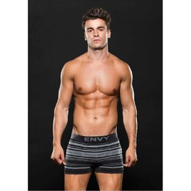 Envy Seamless Trunk Gray Stripes