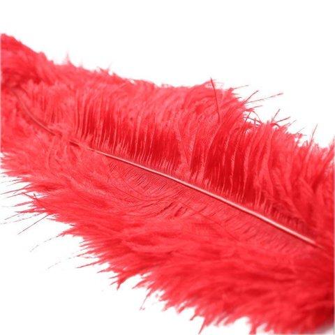 Ostrich Feather Red Tickler
