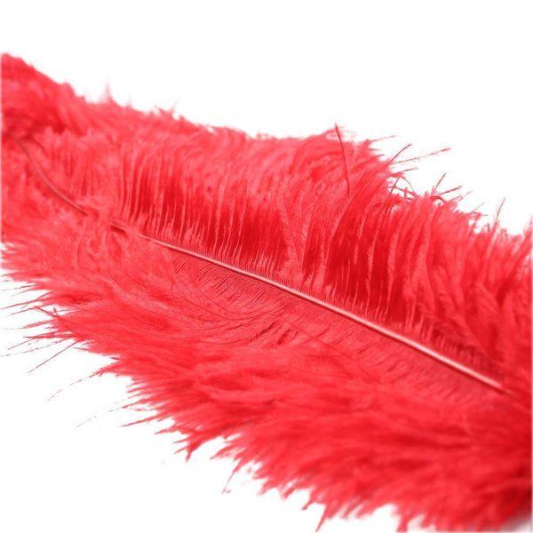 Sportsheets Ostrich Feather Red Tickler