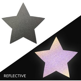 Pastease Light Reflective Gun Metal Grey Star Pasties