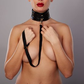 Allure Forever Collar and Leash