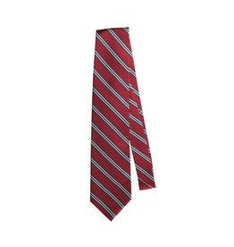 EE Dee Trim Red / Navy / White Striped Tie (48 inch)