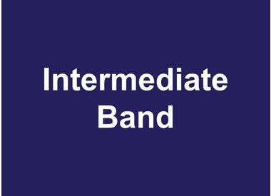 Intermediate Band