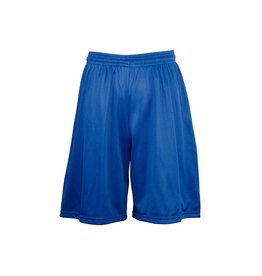 Soffe Royal Blue Mesh Athletic Shorts #058
