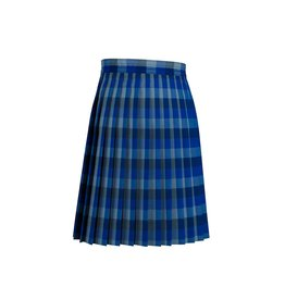 Dennis Uniform Hastings Plaid Knife Pleat Skirt #1886
