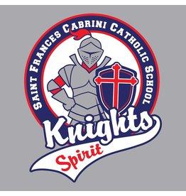 2c17ad11 Hanes Light Steel Short Sleeve Spirit Tee #5370