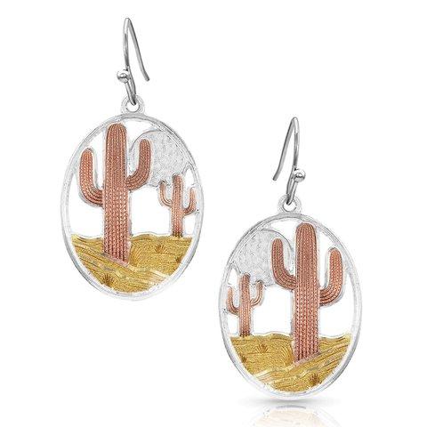 Montana Silversmiths Earrings ER4345TRI