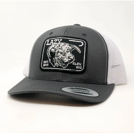 Lazy J Ranch Wear Gray and White Elevation Cattle Hat