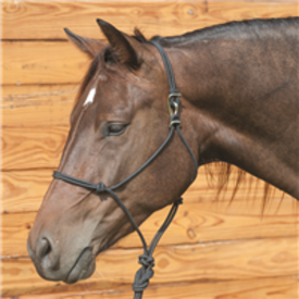 Classic Equine Black Rope Halter w Buckle Hook