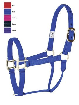 "American Heritage Equine 1"" Flat Nylon Large Horse Halter"