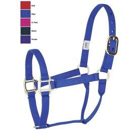 "American Heritage Equine 1"" Flat Nylon Large Horse Halter"