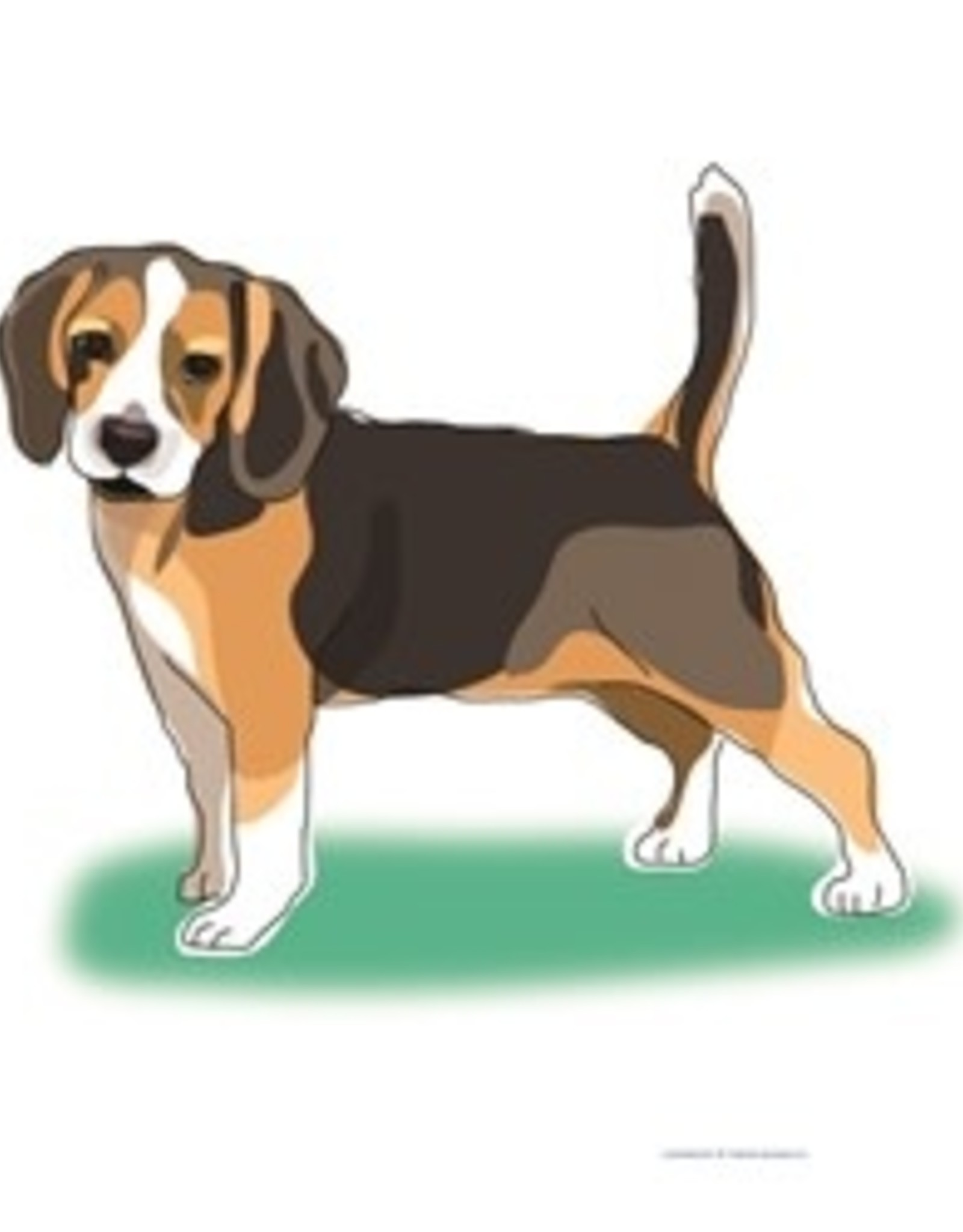 Paper Russells Tea Towel Beagle Tail Up