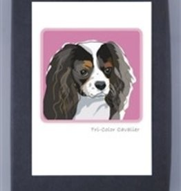 Paper Russells Tri-color Cavalier Head Shot
