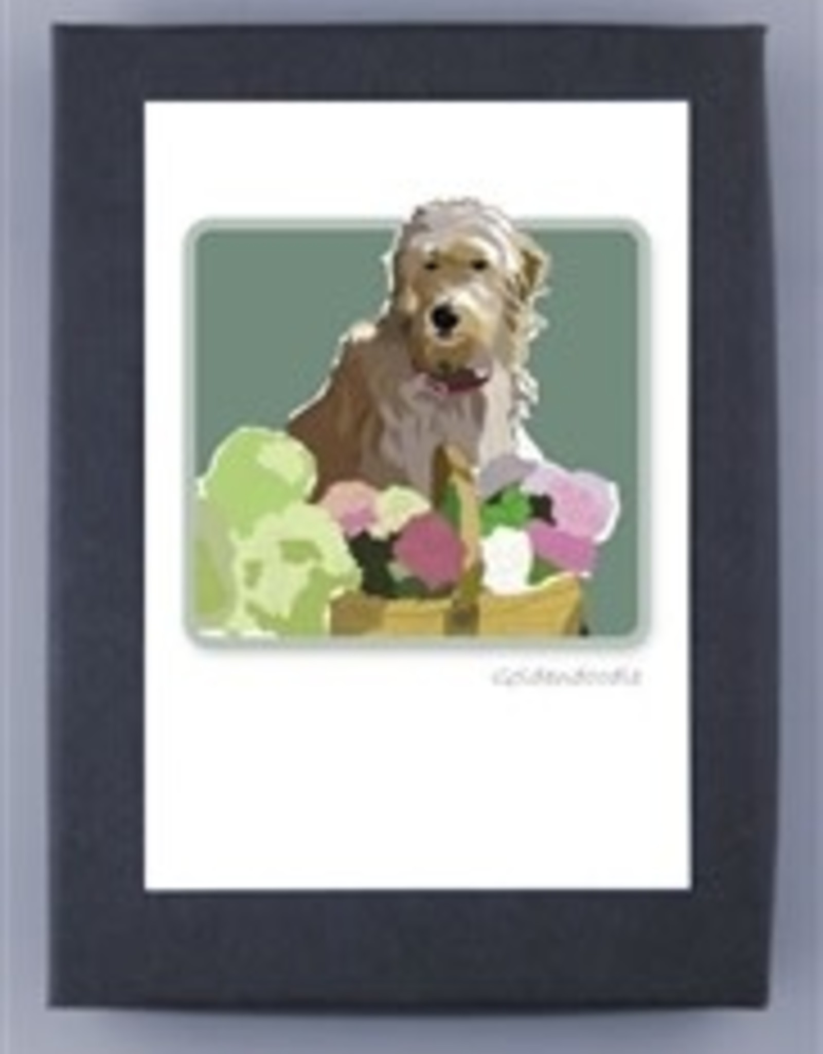 Paper Russells Goldendoodle