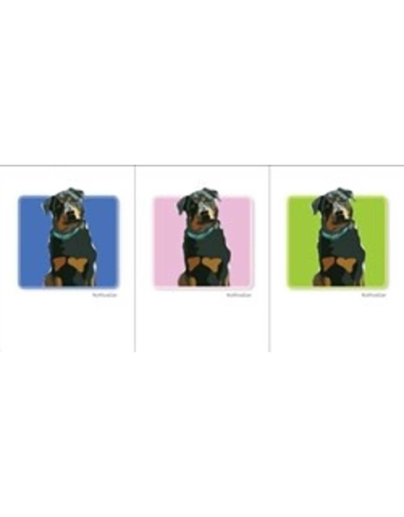 Paper Russells Rottweiler/blue Collar