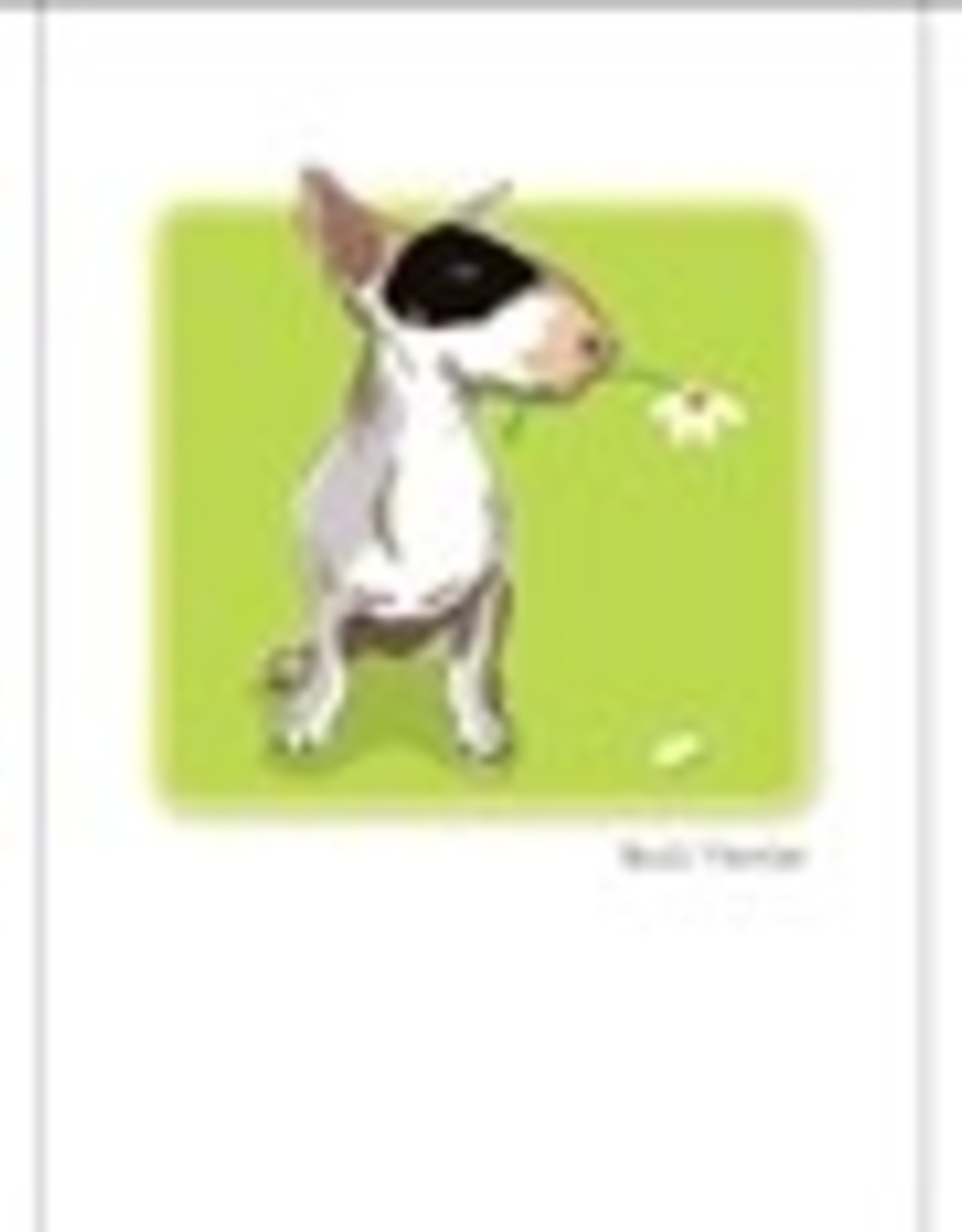 Paper Russells Bull Terrier Daisy
