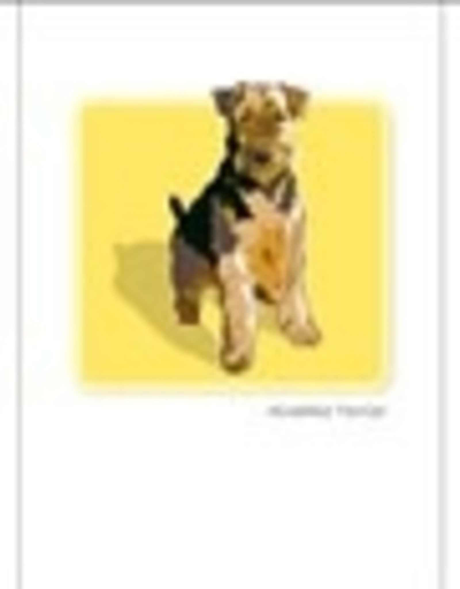 Paper Russells Airedale Terrier