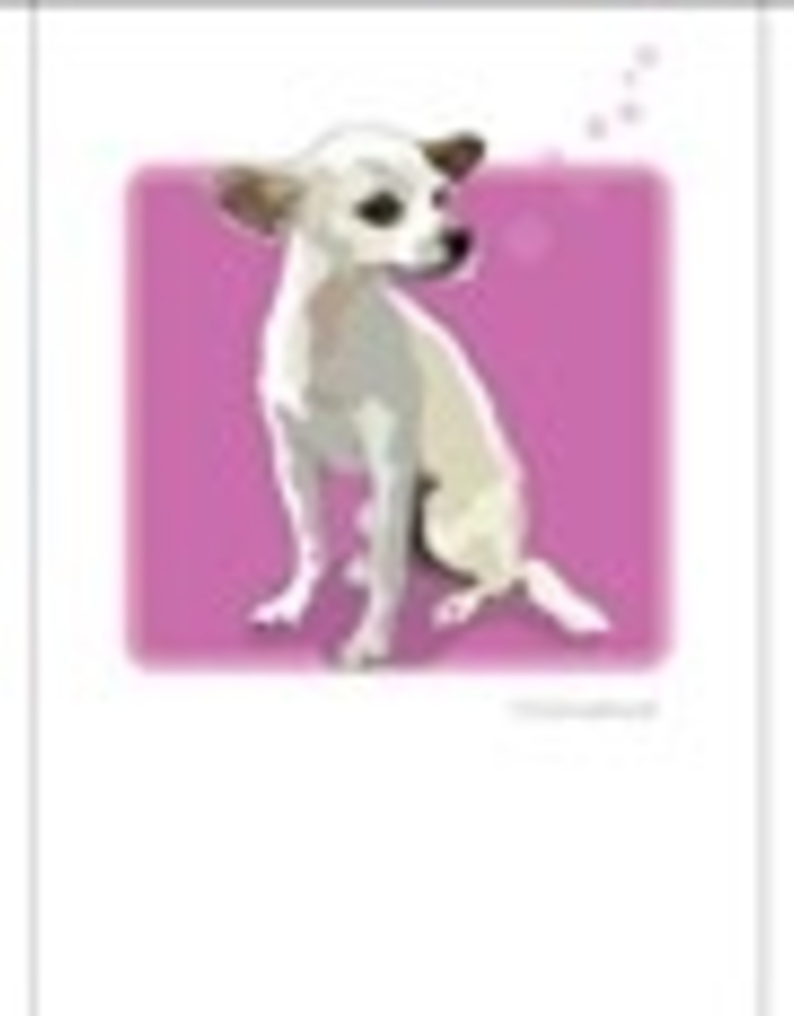 Paper Russells Chihuahua White