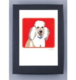 Paper Russells Poodle White-2