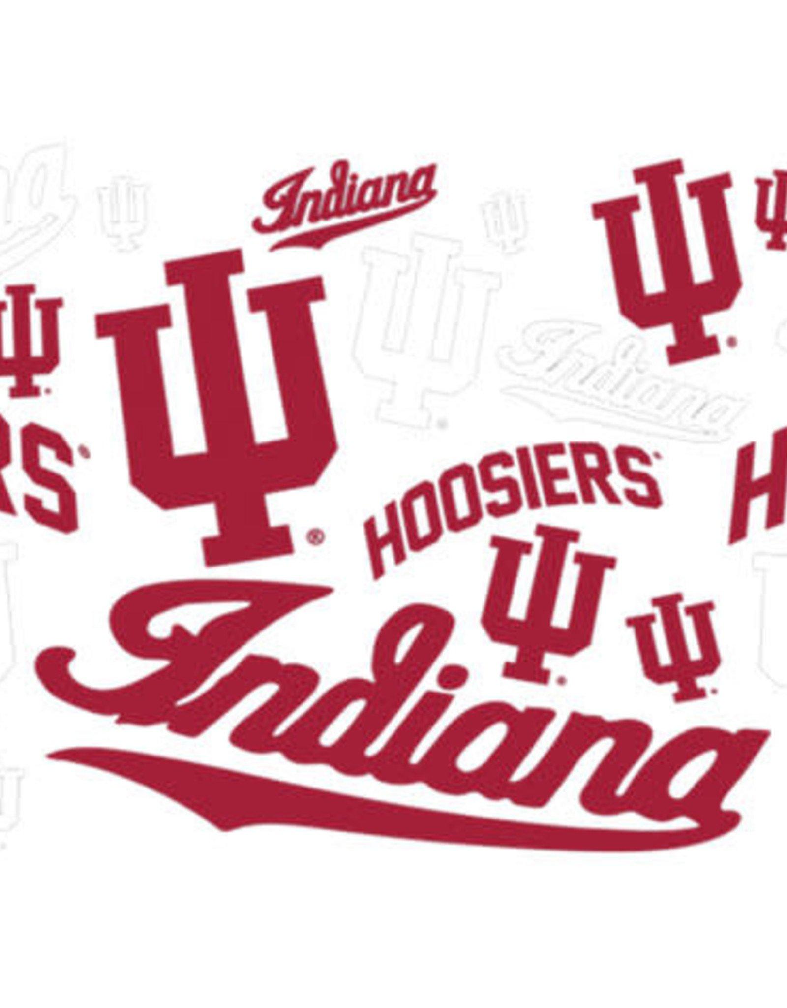 Tervis Tumbler 16oz Indiana/lid