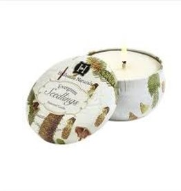 Joules Evergreen Seedlings candle Tin