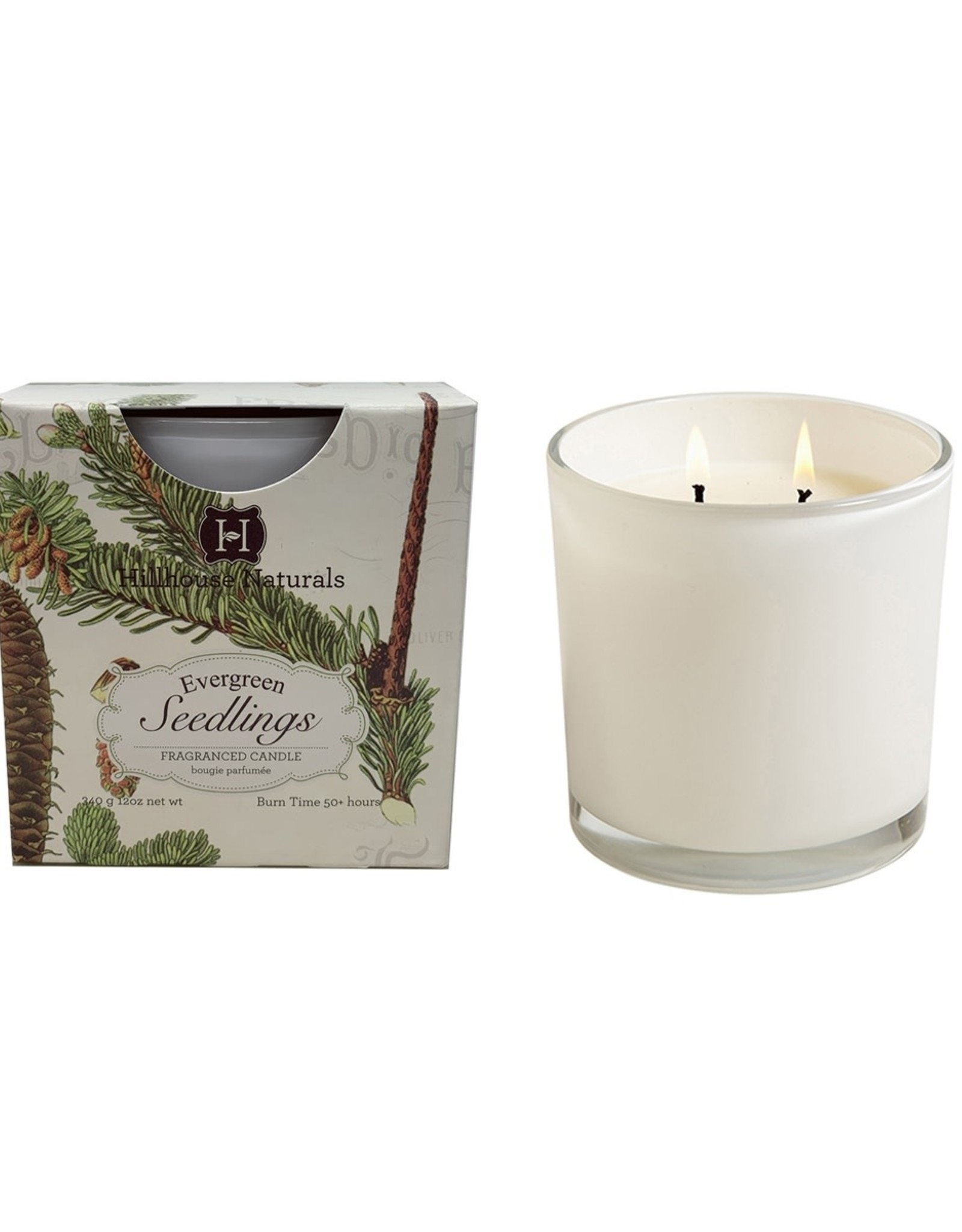Hillhouse Naturals Evergreen Seedlings 2 Wick Candle in White Glass 12oz