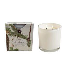 Joules Evergreen Seedlings 2 Wick Candle in White Glass 12oz