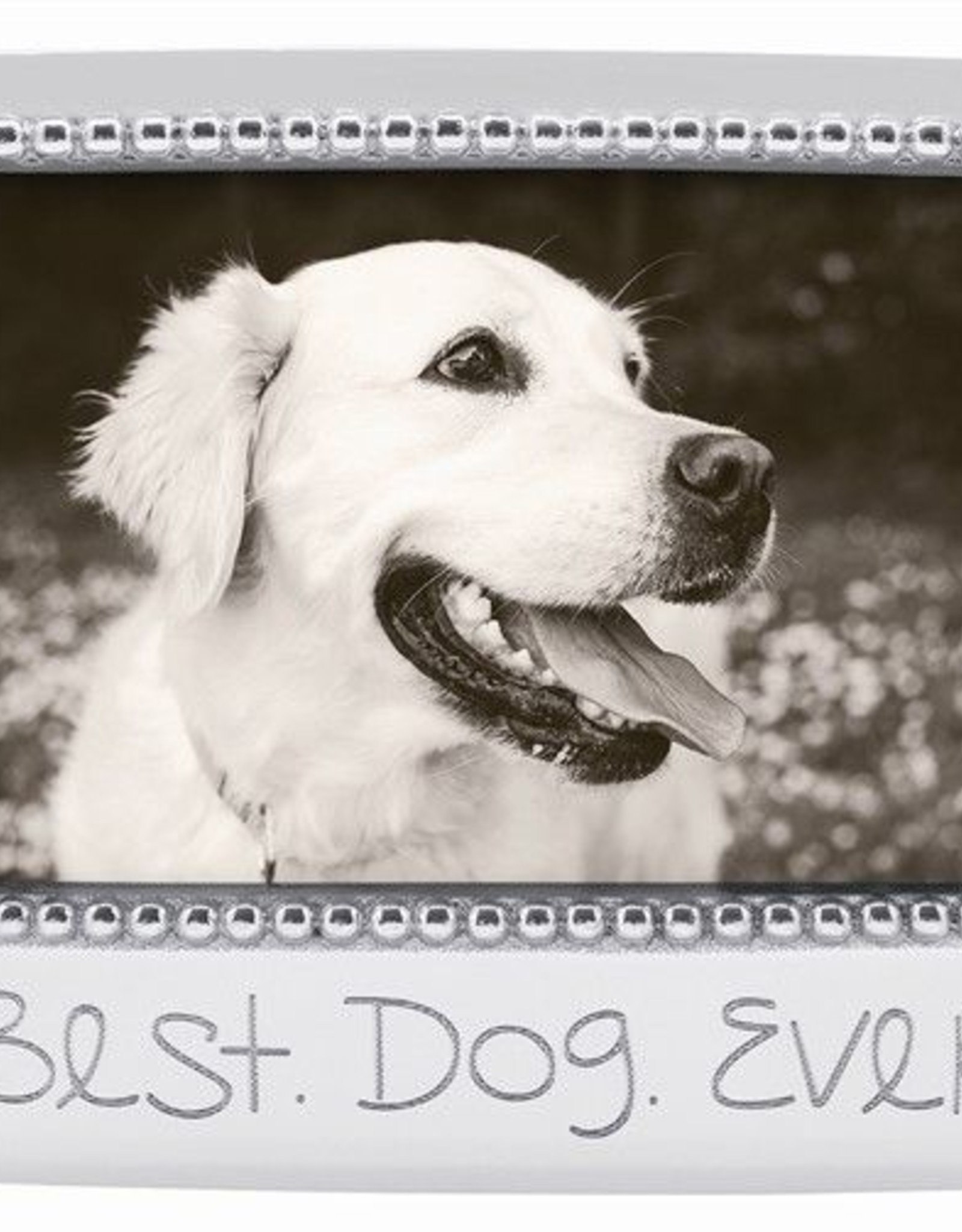 Mariposa Best Dog Ever Frame