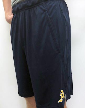 Nike Men's Nike Dry Fit Shorts