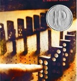 Southern Books The Book Thief  (Freshman Summer Reading)