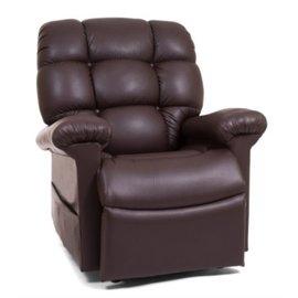Golden Technologies Power Pillow and Twilight Recliner Chair
