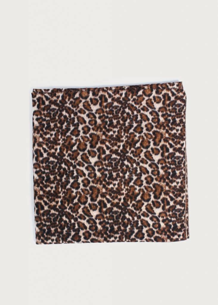 Look by M Cashmere Blend Leopard Scarf