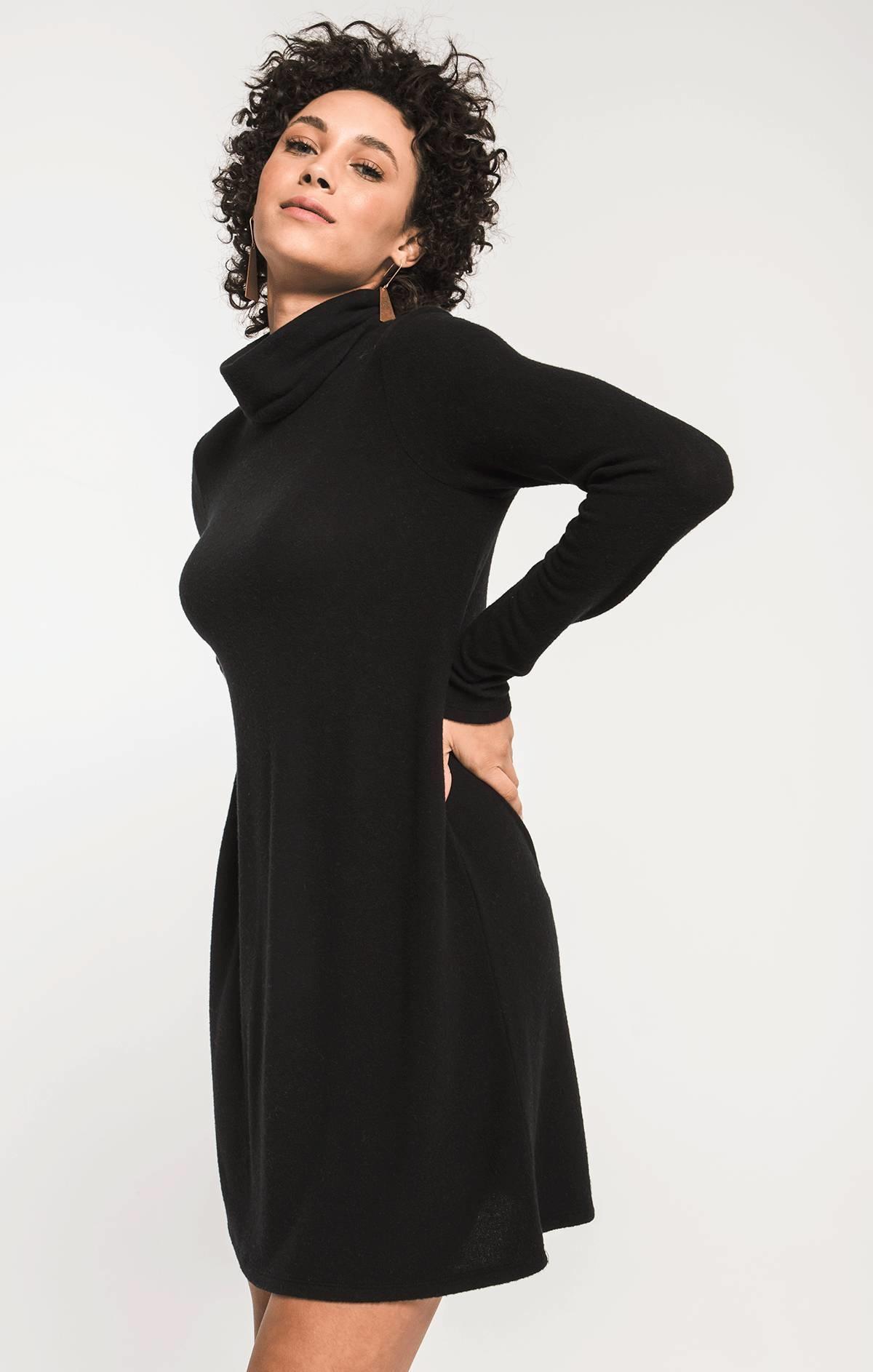 Z Supply Sweater Knit Turtleneck Dress