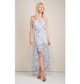 Greylin Melody Printed Long Dress