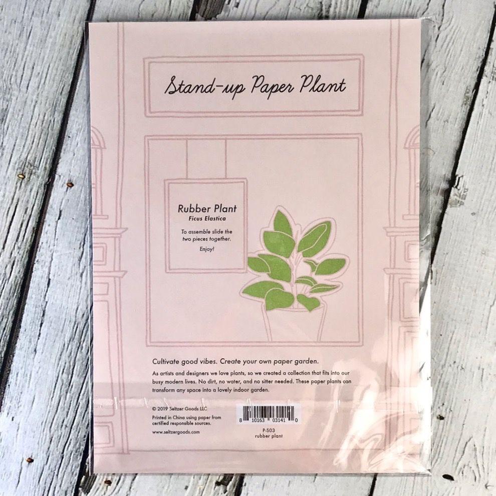 Paper Rubber Plant