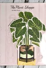 Paper Elephant Ear Plant
