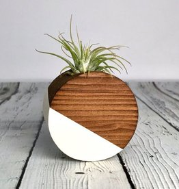 White Circle Magnetic  Air Plant Holder