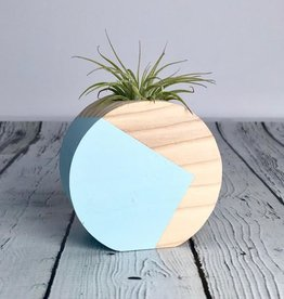 Pale Blue Circle Air Plant Holder