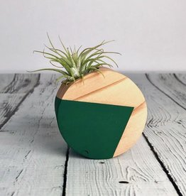 Forest Green Circle Magnetic Air Plant Holder
