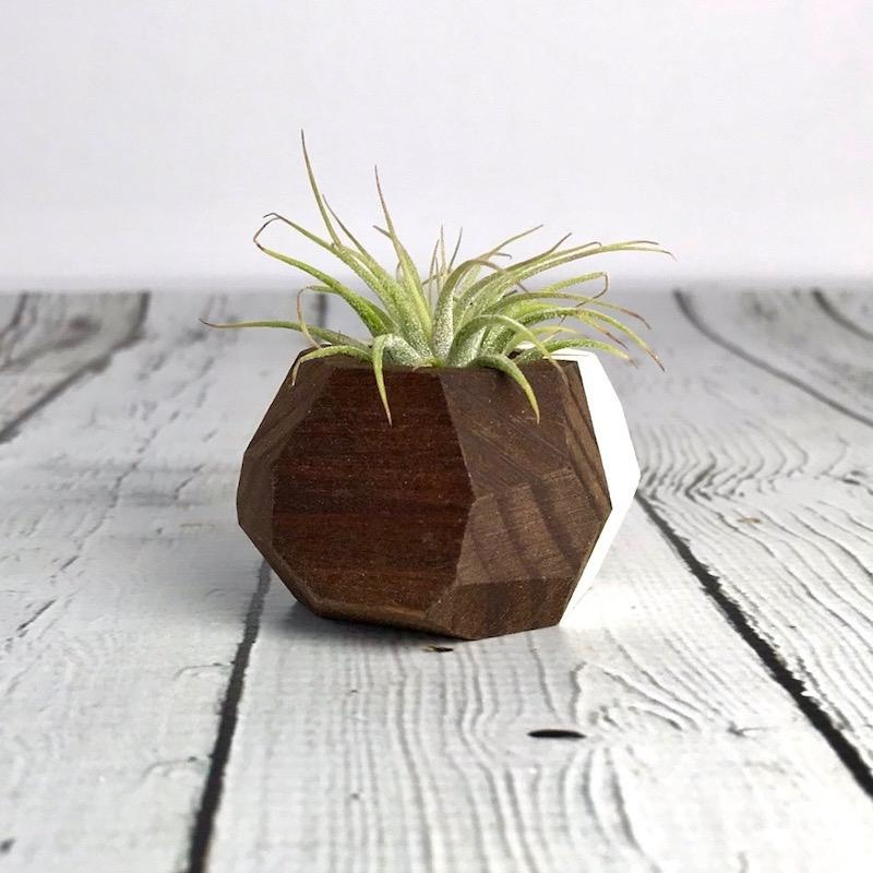 White Geo Air Plant Holder