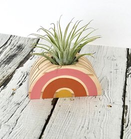 Pink, Orange, Yellow Rainbow Air Plant Holder