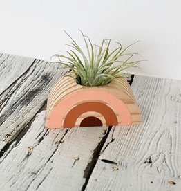 Maroon, Orange, Pink Rainbow Wood Air Plant Holder