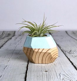 Pale Blue Geo Air Plant Holder