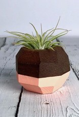 Wood Geo Air Plant Holder