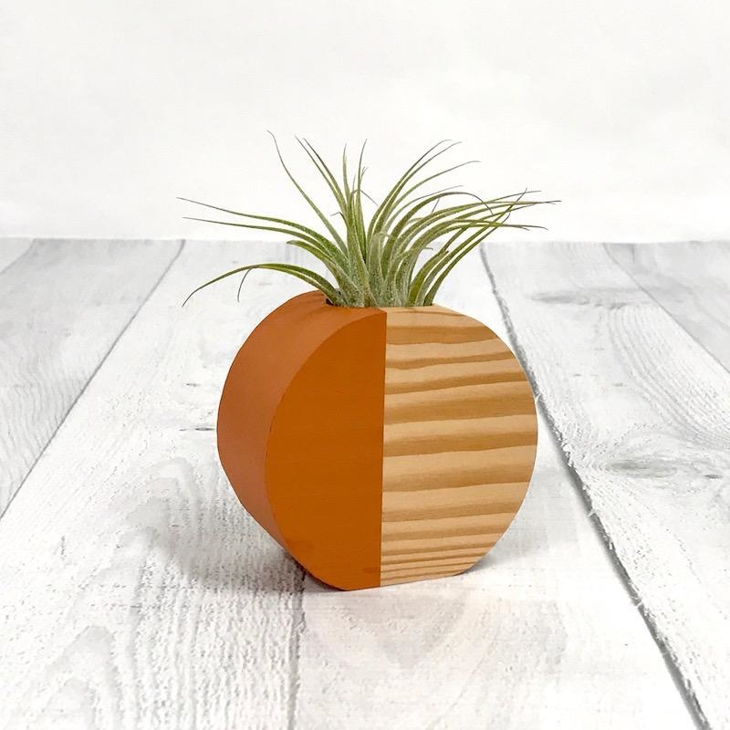 Terra Cotta Circle Air Plant Holder