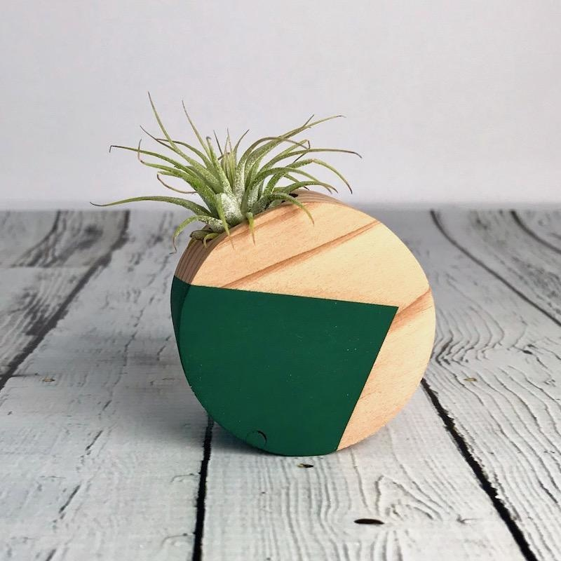 Forest Green Circle Air Plant Magnet