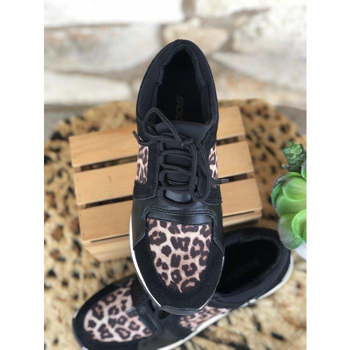 Black & Leopard Range Tennis Shoes