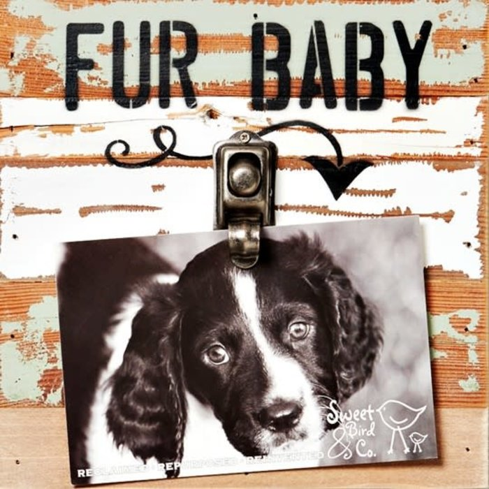 Fur Baby 8x8 Reclaimed Wood Clip Frame