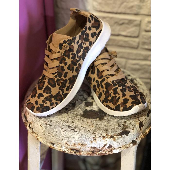 Mayo Leopard Tennis Shoe